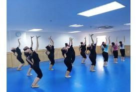 民族舞蹈、传统舞蹈教学培训